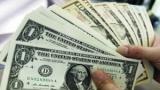 قفزة تاريخية للدولار بالسوق السوداء ليسجل