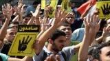 المؤبد لـ31 إخواني بتهمة أعمال عنف