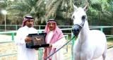 القصة الكاملة السعودية تقرّر إعدام حصان امام شاشات التلفزيون بسبب مثليته الجنسية